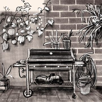 Barbecue and bucket in a back yard by morden