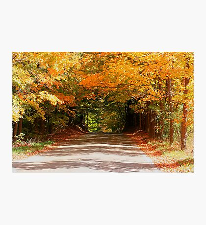 Fall Road Home Photographic Print