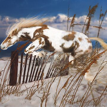 Leaving Hoof Prints In The Sand by halsmith