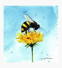 Smudgy Bee Gets Pollen Photographic Print