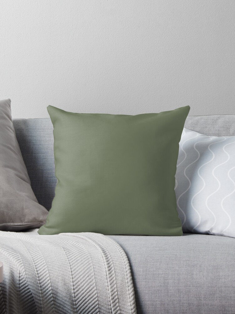 Sage Green Solid Colour Throw Pillows By Broadmeadow Redbubble