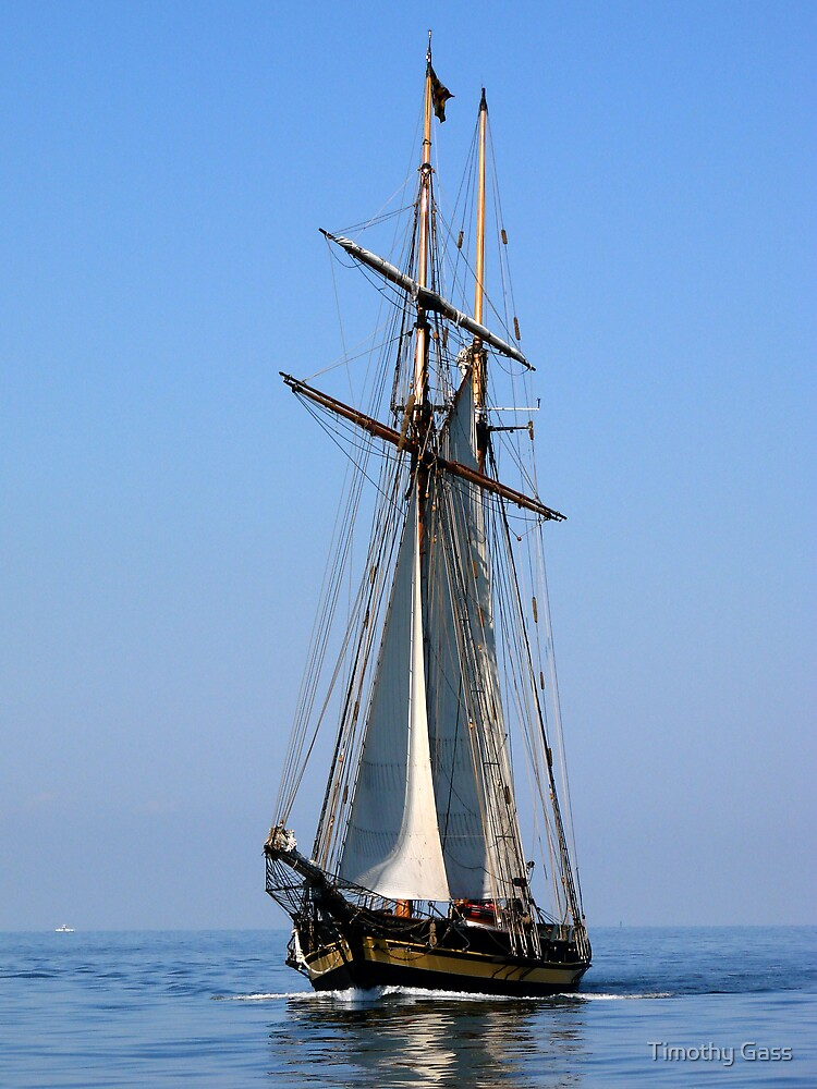 Chesapeake Bay Sailing by Timothy Gass