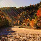 Taughannock Falls by Rachel Blumenthal