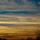 Sunset at Durand Eastman Park by Rachel Blumenthal