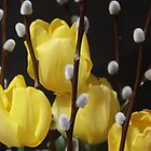 Yellow Tulips Welcome Spring! by SummerJade