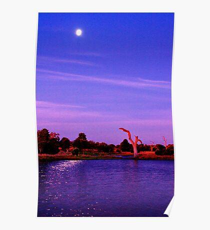 """""""Moonlight Over Minya"""" Poster"""
