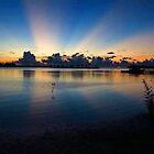 Sunset Rays  by Amanda Diedrick
