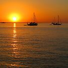 Sailboats at Sunset II by Amanda Diedrick
