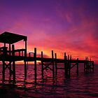Purple Fire Sunset by Amanda Diedrick