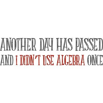 Another Day Has Passed... Algebra T Shirt - Funny Maths Tee by FordBros