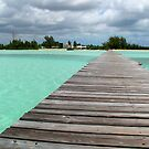 Cherokee Sound, Bahamas  by Amanda Diedrick