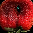 EYE SEE YOU BERRY WELL! by Heather Friedman