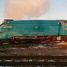 Steam Loco Shunts lincoln Cathederal by Mark Baldwyn