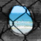Through the hole in the fence by Cydell