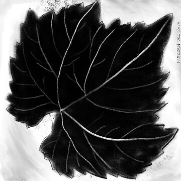 Grape leaf by morden