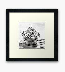 Potted succulent  Framed Print