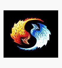 Yin Yang Dragon Fantasy Tshirt Photographic Print