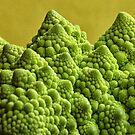 A Gorgeous Green-75% Green