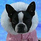 Snow Princess by Cazzie Cathcart