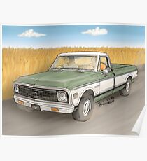 Birds in a Truck Poster