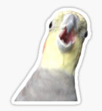 Honk Face Sticker Sticker
