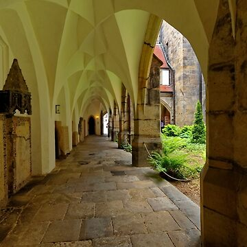 In the Cloister, the Cathedral, Meissen, Saxony, Germany by PriscillaTurner