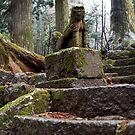 Stone Guard by Akira