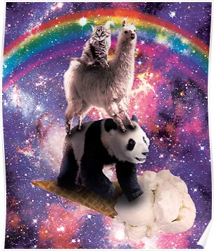 Space Cat Llama Panda Riding Ice Cream