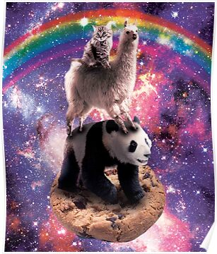 Space Cat Llama Panda Riding Cookie