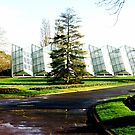 The Robert Clark Conservatory  by cjcphotography