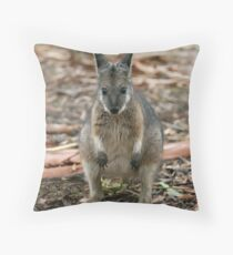 Tammar Wallaby Throw Pillow