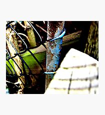 Decayed Fence! Photographic Print