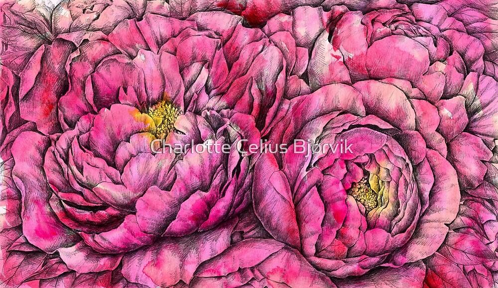 Peonies three pink by charlottecelius