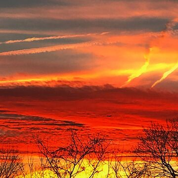 Orange Sunset by virginian