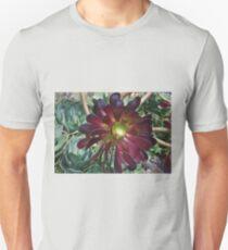 Black Aeonium T-Shirt