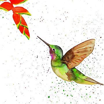 Humming-bird Colorful by SteffiVioletta