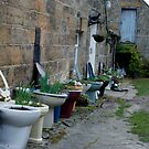 Loo With A View  -  Bums, Bogs, and Flowerpots! by dougie1