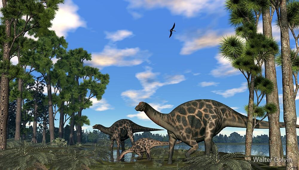 Dicraeosurus by Walter Colvin