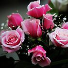 """""""The rose speaks of love silently, in a language known only to the heart.""""  by autumnwind"""
