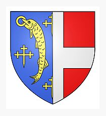 French France Coat of Arms 0428 Blason Arry  Photographic Print