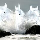 """Sea Horse"" by Raymond Kerr"