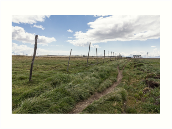 Farm field fence posts with dirt trail in grass, Ecuador by Kendall Anderson