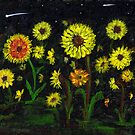 Persides Shower over a Field of Sunflowers  by Anne Gitto