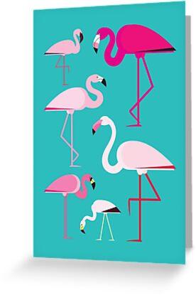 Flamingos von Fabio Rex