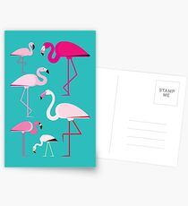 Flamingos Postcards