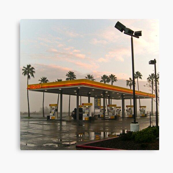 californian oasis Canvas Print