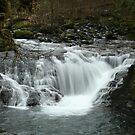 Sweet Creek 7 by CarrieAnn