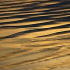 GOLDEN SANDS by fsmitchellphoto