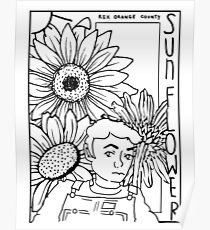 rex orange county sunflower Poster