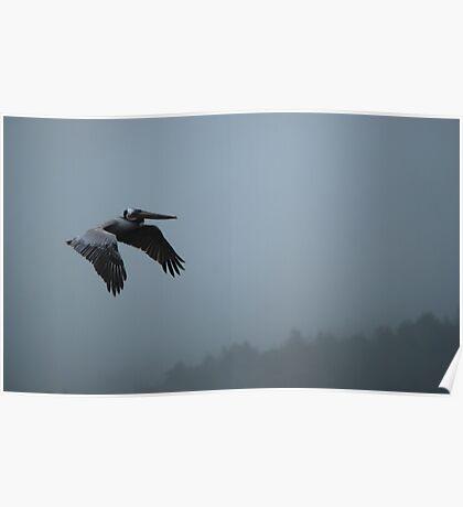 Coastal Mantra Series... Flying Meditation Poster